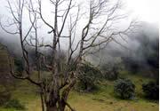 Vulkan Barú National Park